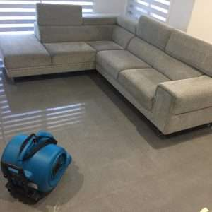 Sydney Carpet Cleaning